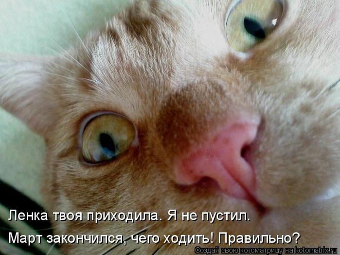 kotomatritsa_NNI (700x524, 256Kb)