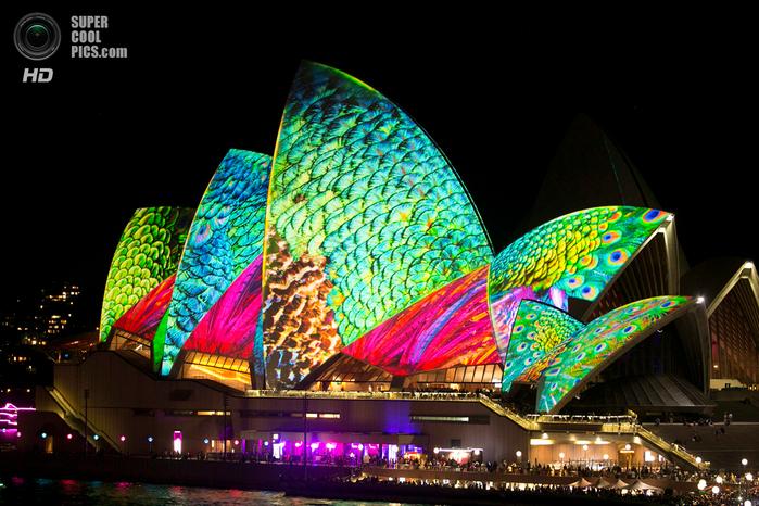световое шоу австралия 17 (700x466, 433Kb)
