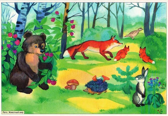 Картинки по запросу картинки для детей животный мир