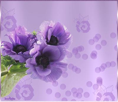 Фиолетовые-цв (400x347, 170Kb)