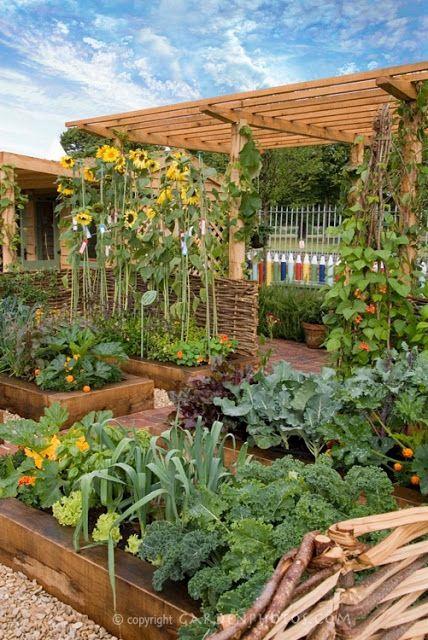 сады (428x640, 76Kb)