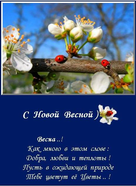 4482298_Bezimyannii (463x634, 63Kb)