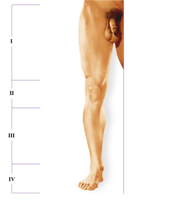 внутренняя часть колена убрать жир