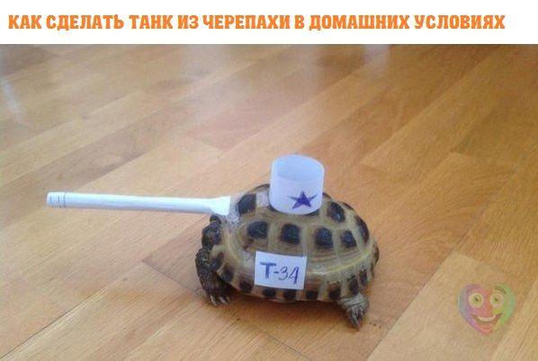 танк (598x402, 32Kb)
