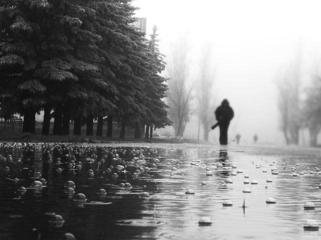 Дождь/4645991_rain (640x480, 57Kb)