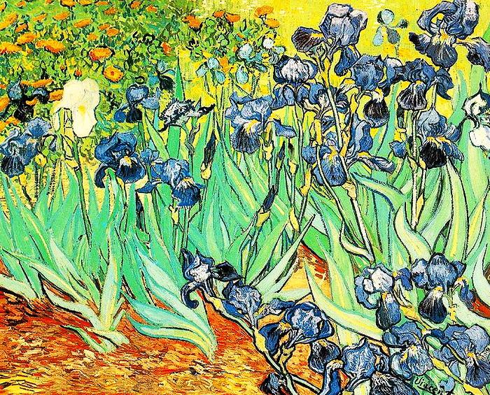 1 Цветущие ирисы, 1889 (700x565, 993Kb)