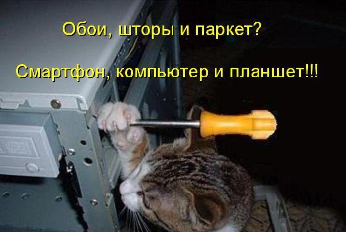 1401649509_cm_20140530_04019_001 (700x470, 186Kb)