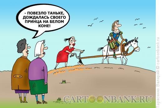 Картинки по запросу принц на белом коне где ты тварь