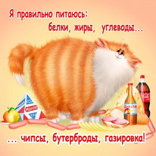 4497417_1316922930_www_nevsepic_com_ua_xenopus299_1_ (500x500, 194Kb)