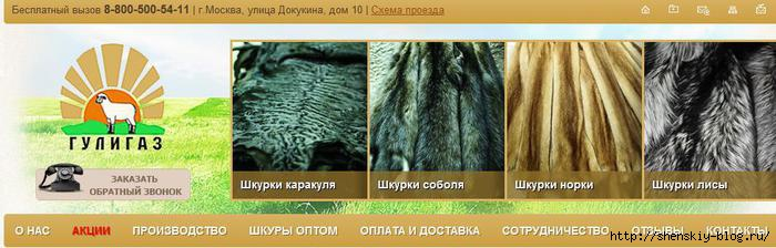 4121583_vipvachp (700x224, 113Kb)
