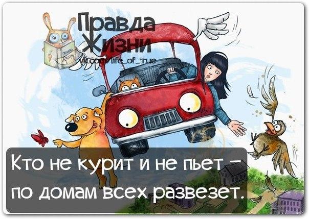 1384198131_frazochki-18 (604x429, 246Kb)