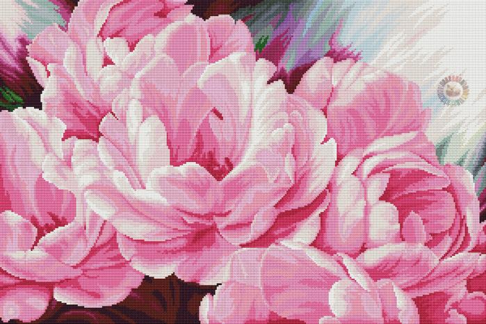 Pink peonies (700x466, 557Kb)