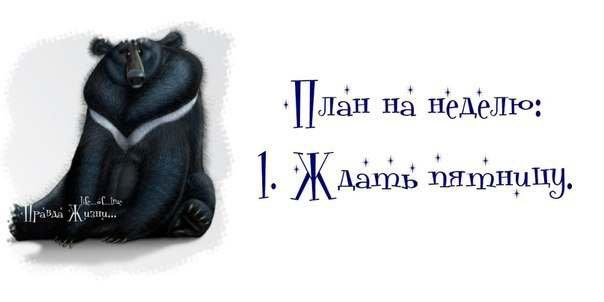 1367923137_1367785198_1_12 (604x302, 62Kb)
