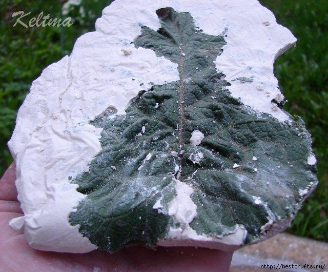 Декоративные листья из гипса своими руками (32) (640x530, 226Kb)