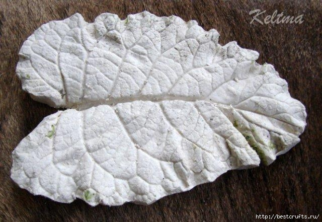 Декоративные листья из гипса своими руками (36) (640x441, 179Kb)