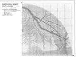 Превью JCDW241 Daffodil Wood4 (700x528, 249Kb)