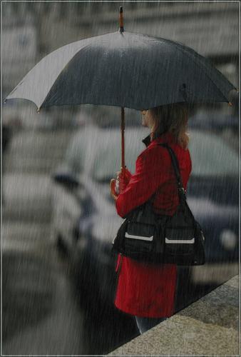 3241858_rain3 (338x500, 95Kb)
