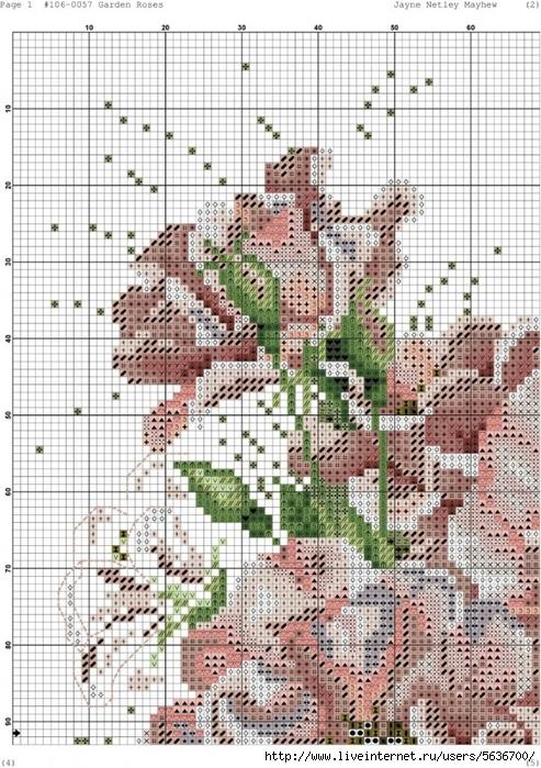 Garden_Roses.xsd-001-723x1024 (493x700, 355Kb)