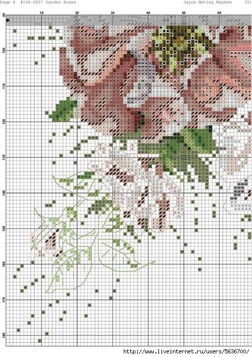 Garden_Roses.xsd-004-723x1024 (493x700, 339Kb)