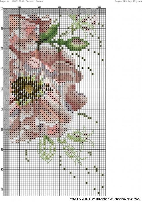 Garden_Roses.xsd-006-723x1024 (493x700, 277Kb)