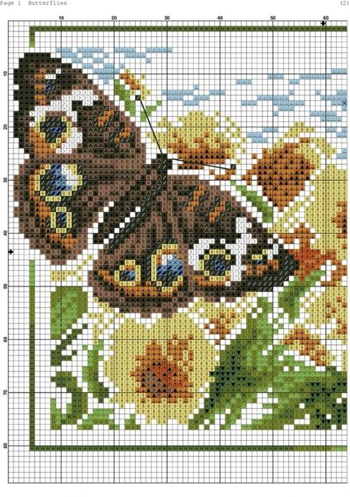 Butterflies_-001-723x1024 (493x700, 331Kb)