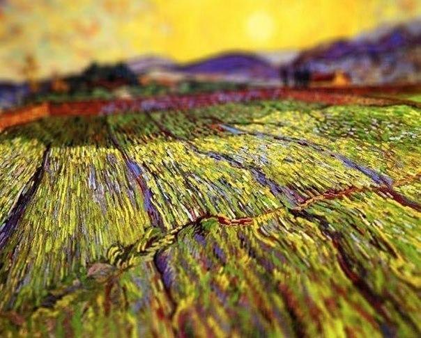 Картины Ван Гога с эффектом tilt-shift4 (604x486, 326Kb)