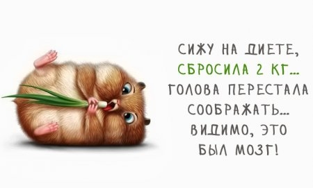 1414957620_pozitiv_29 (450x271, 42Kb)