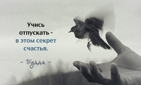 1414957697_pozitiv_12 (450x272, 51Kb)