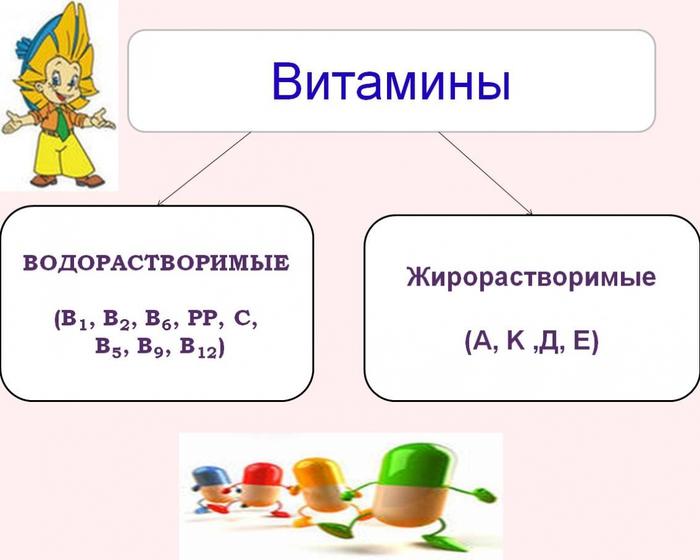 5710130_Nemnogo_o_vitaminah0 (700x560, 160Kb)