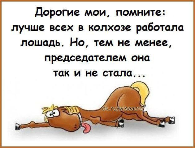http://img0.liveinternet.ru/images/attach/c/0/117/906/117906686_1415375733_eek.jpg