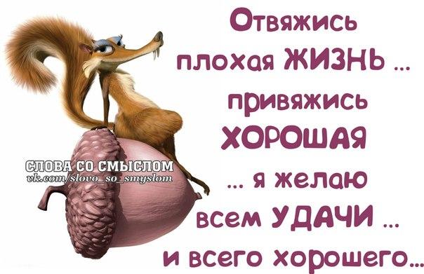 1391896710_frazki-8 (604x391, 192Kb)
