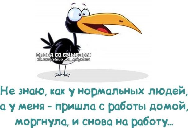 1391896712_frazki-4 (604x410, 151Kb)