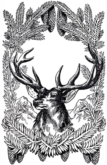 Vintage-Christmas-Deer-Image-GraphicsFairy-667x1024 (455x700, 303Kb)