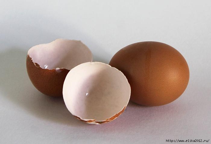 яичная скорлупа/4800487_2 (700x478, 185Kb)
