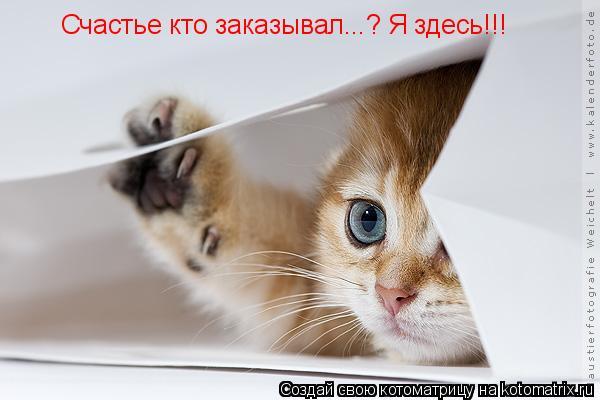 1415644186_342102 (600x400, 32Kb)