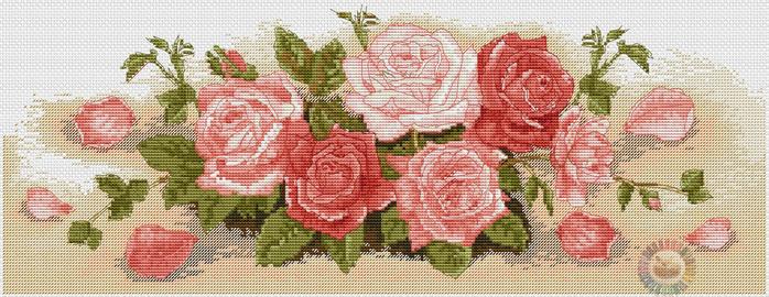 Spray Of Roses (700x270, 360Kb)