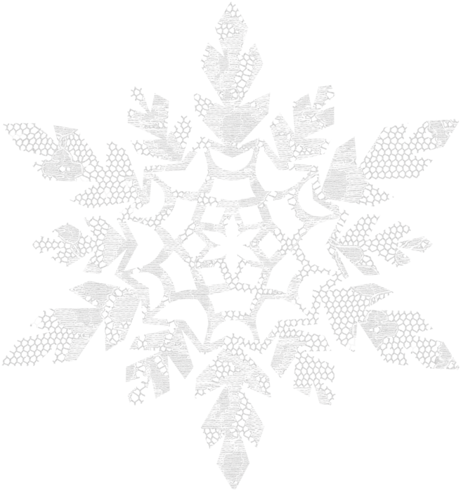 !_winterweddingelements_snowflake1 (656x700, 516Kb)