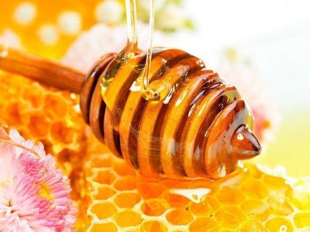 мёд для красоты (604x453, 54Kb)