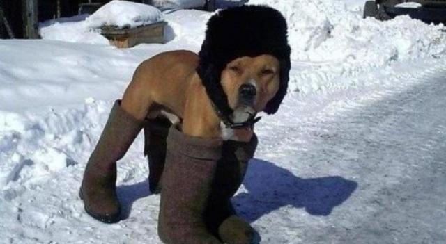 Пришло время теплой зимней обуви.