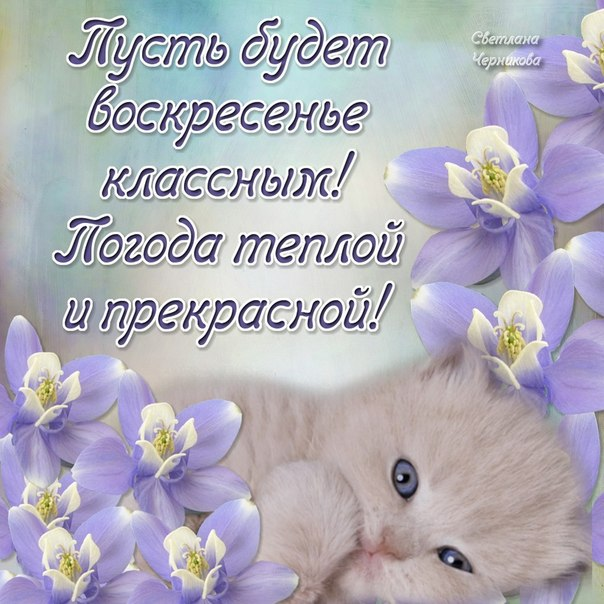 http://img0.liveinternet.ru/images/attach/c/0/118/283/118283180_Voskresene_1.jpg