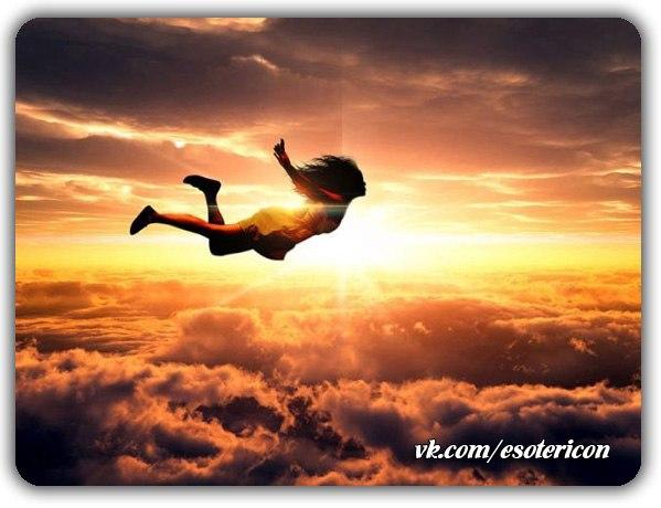 -живи летай и наслаждайся (599x460, 51Kb)