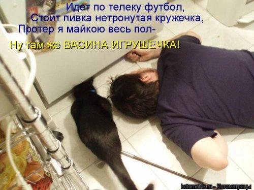 1416587871_kotomatricy-1 (500x374, 159Kb)