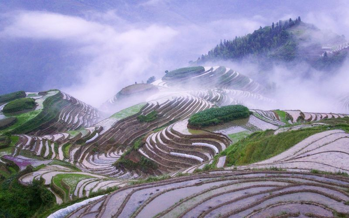 terraces-china-wallpaper (700x437, 316Kb)