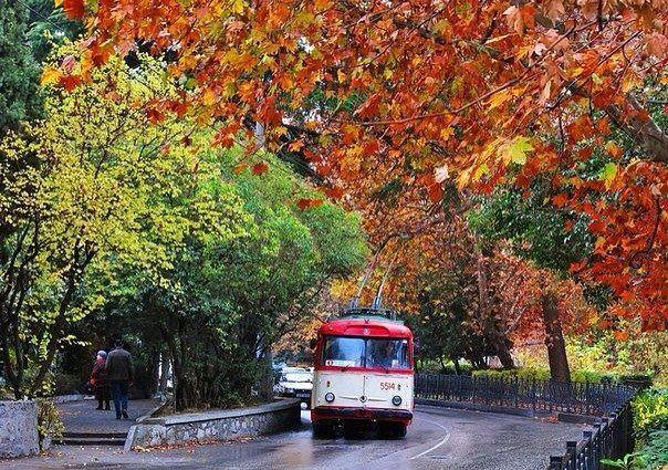 троллейбус (604x425, 504Kb)