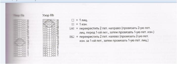 Fiksavimas1 (700x255, 128Kb)