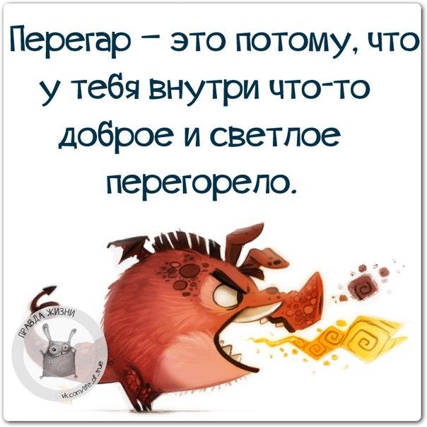 1417031362_frazki-10 (604x604, 235Kb)