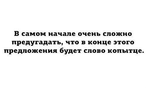 smeshnie_kartinki_141721475599 (500x300, 38Kb)