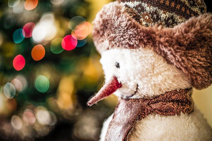 3085196_snowman_01 (700x464, 121Kb)