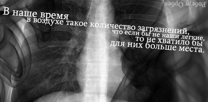 frazi_21 (700x343, 106Kb)
