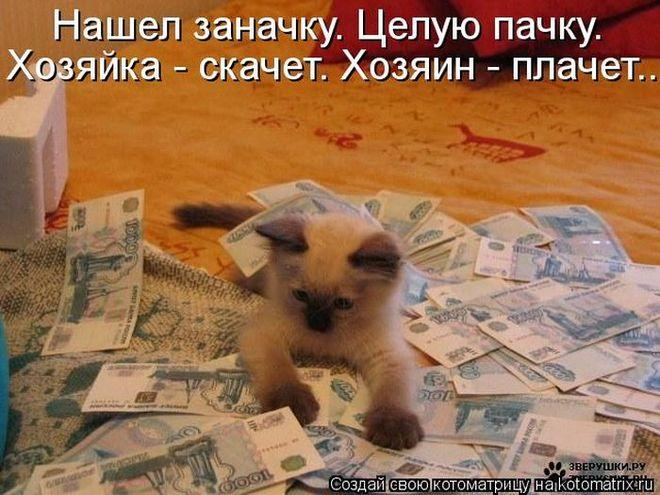 4650338_98044564_large_cm_20130301_02509_036_1_ (660x495, 74Kb)